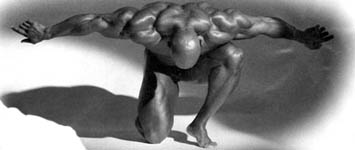 free bodybuilding workouts